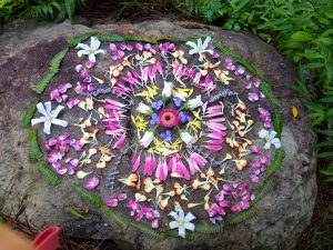 Mandala made from flowers, pedals, and fern leaves